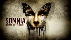 Somnia. Dentro de tus sueños Español