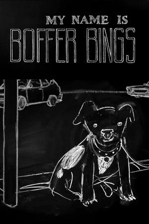 My Name Is Boffer Bings