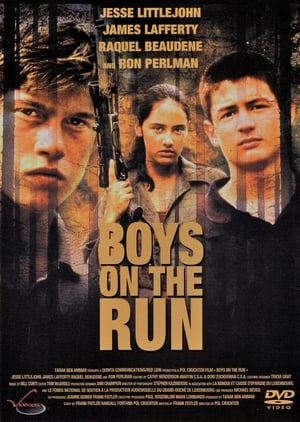 Boys on the Run (2003)