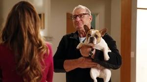 Modern Family saison 5 episode 22