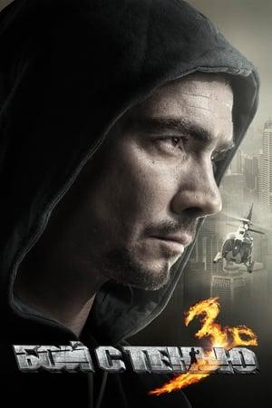 Бой с тенью 3: Последний раунд