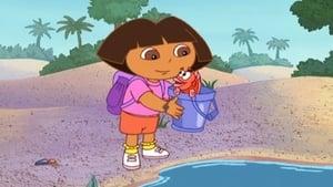Dora the Explorer Season 1 :Episode 18  Fish Out of Water