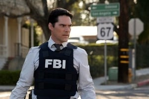 Criminal Minds Season 3 :Episode 17  In Heat