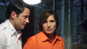 Law & Order: Special Victims Unit Season 9 :Episode 15  Undercover