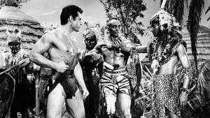 Tarzan's Fight for Life (1958) Poster