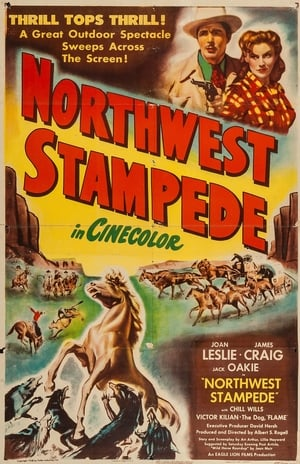 Northwest Stampede