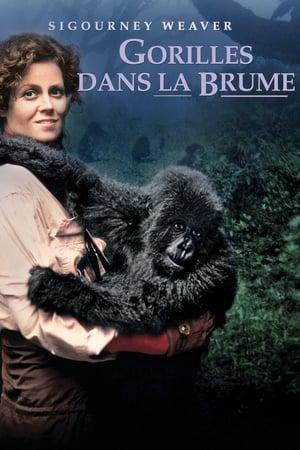 Télécharger Gorilles dans la Brume ou regarder en streaming Torrent magnet
