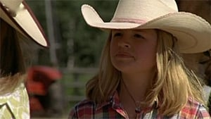 Heartland Season 1 :Episode 2  After the Storm