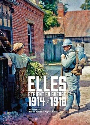 Elles étaient en guerre (1914 - 1918)