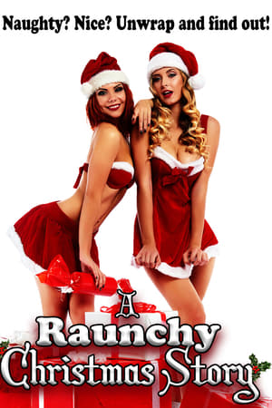 A Raunchy Christmas Story (2018)
