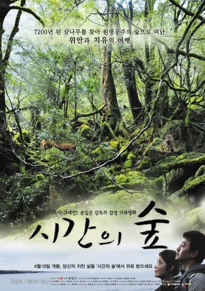 시간의 숲