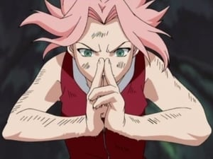 Naruto Season 1 :Episode 32  Sakura Blossoms!