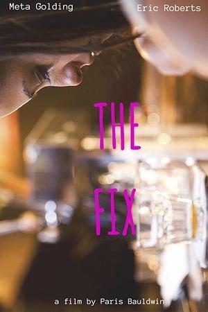 The Fix (2015)