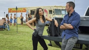 Hawaii Five-0 Season 8 :Episode 20  He lokomaika'i ka manu o Kaiona (Kind is the Bird of Kaiona)
