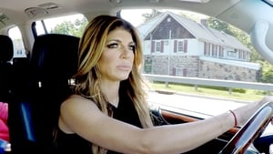 The Real Housewives of New Jersey: 8×13