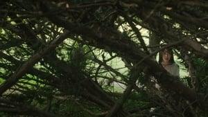 La doncella Película Completa HD 720p [MEGA] [LATINO]
