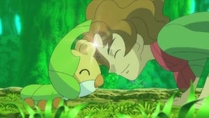 Pokémon Season 14 : Sewaddle and Burgh in Pinwheel Forest!