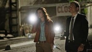 NCIS Season 7 :Episode 22  Borderland