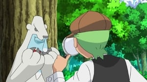 Pokémon Season 15 :Episode 40  The Mystery of the Missing Cubchoo!