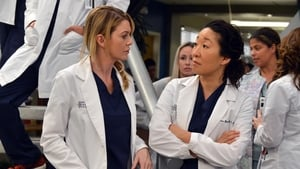Grey's Anatomy Season 10 Episode 14