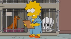 The Simpsons Season 27 :Episode 15  Lisa the Veterinarian