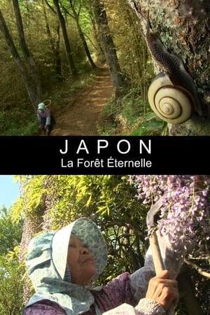 Japon - La forêt éternelle