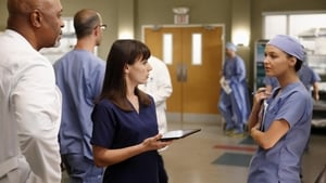 Grey's Anatomy Season 9 Episode 12