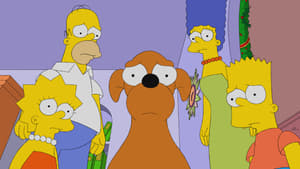 The Simpsons Season 31 :Episode 22  The Way of the Dog