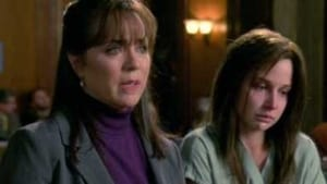 Law & Order: Special Victims Unit Season 10 :Episode 11  Stranger