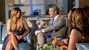 The Real Housewives of New Jersey: 8×14