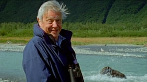 Attenborough's Life Stories: Part One - Life on Camera