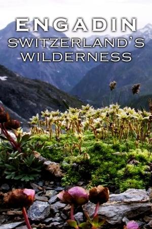 Engadin: Switzerland's Wilderness