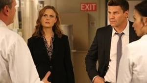 Bones Season 9 : The Cold in the Case