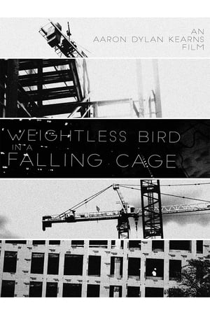 Weightless Bird In A Falling Cage (2017)