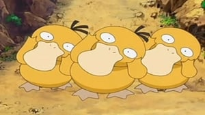 Pokémon Season 11 :Episode 35  The Psyduck Stops Here!