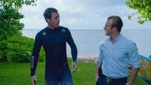 Hawaii 5-0 saison 4 episode 19