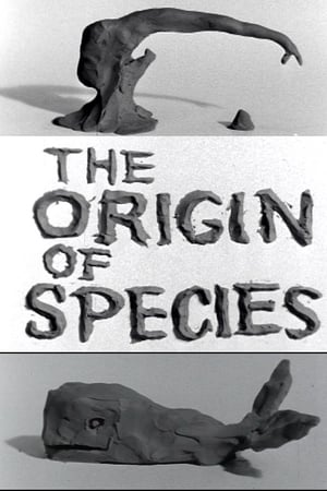 Clay or the Origin of Species