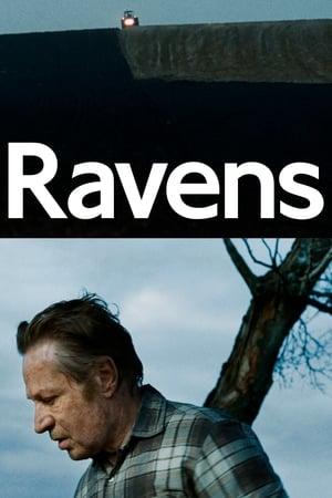 Korparna (Ravens) (2017)