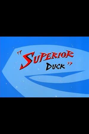 Superior Duck