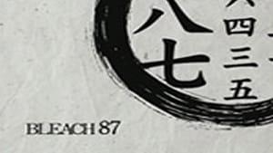 Byakuya Is Summoned! The Gotei 13 Start to Move