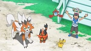 Pokémon Season 22 : Don't Ignore the Small Stufful!