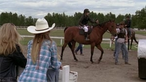 Heartland Season 3 :Episode 7  The Starting Gate