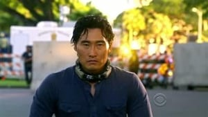 Hawaii Five-0 Season 1 :Episode 12  Desperate Measures
