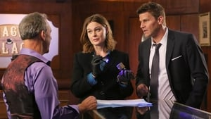Bones Season 11 : The Promise in the Palace
