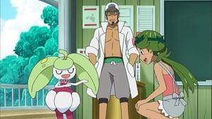 Pokémon Season 21 : Episode 38