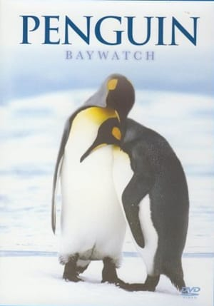 Penguin Baywatch Antarctica (2015)