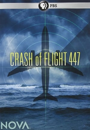 Crash of Flight 447