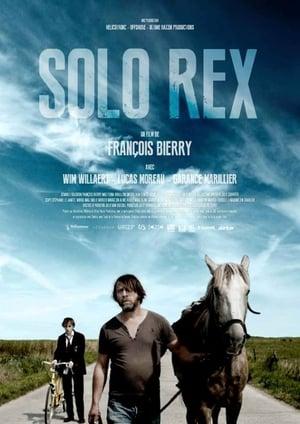 Solo Rex