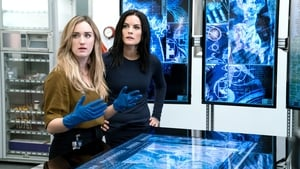 Blindspot Season 3 :Episode 2  Enemy Bag of Tricks