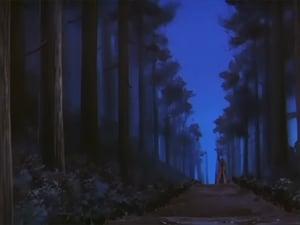 The Girl Bandit: Misao Makimachi's Hidden Side